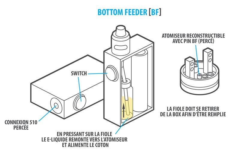bottom-feeder
